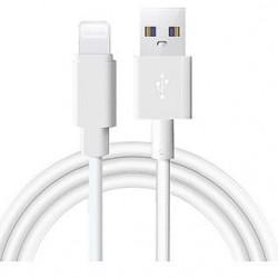 Lightning-Cable de chargement